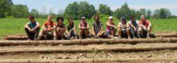 grupo di volontari seduti su tronchi, all'aperto