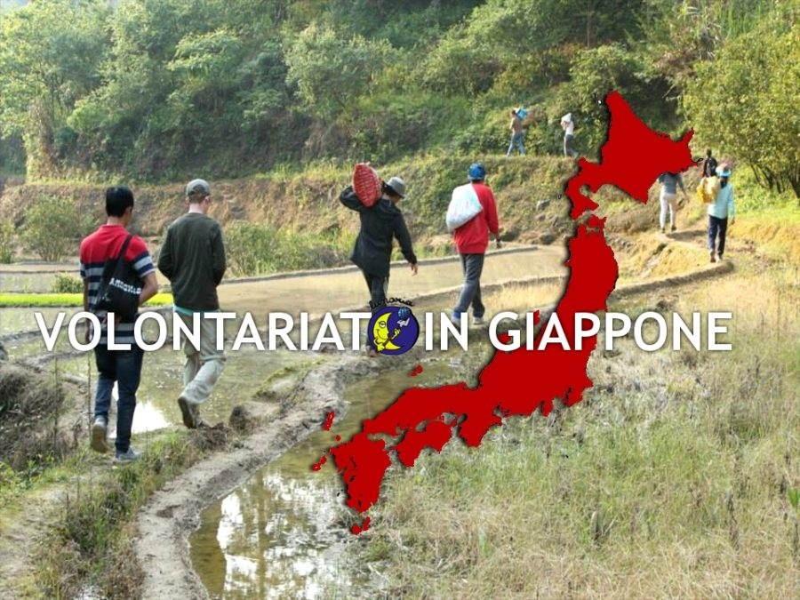 Volontariato Giappone