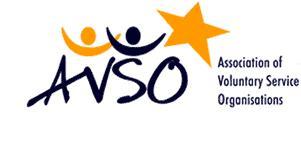 Seminario a Bruxelles: Voluntary Service Toolbox Seminar