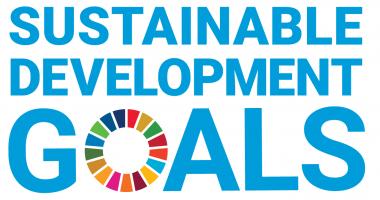 DG logo with UN Emblem_Square_Web